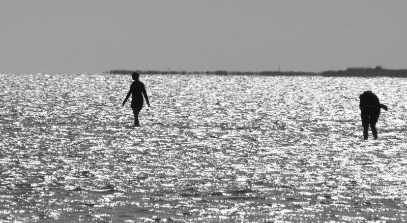 Meleaua Sf Gheorghe_0000_mergand pe apa